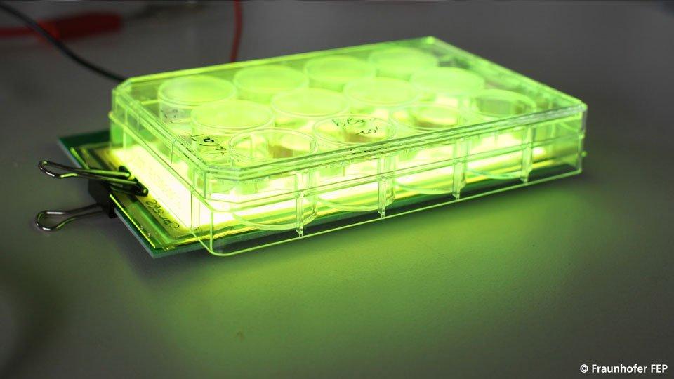 Grüne OLEDs für eine Lichttherapie
