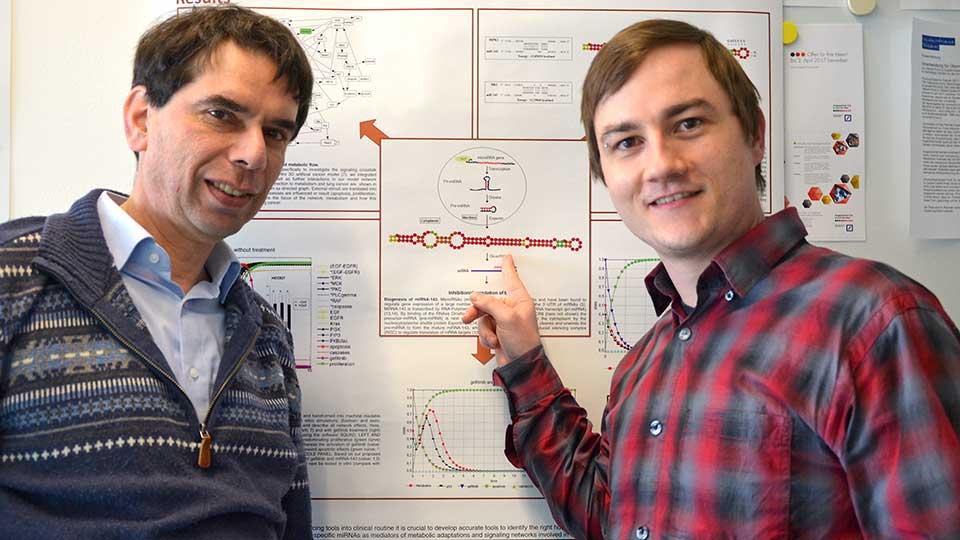 Bioinformatik, Ergebnisse Doktorarbeit