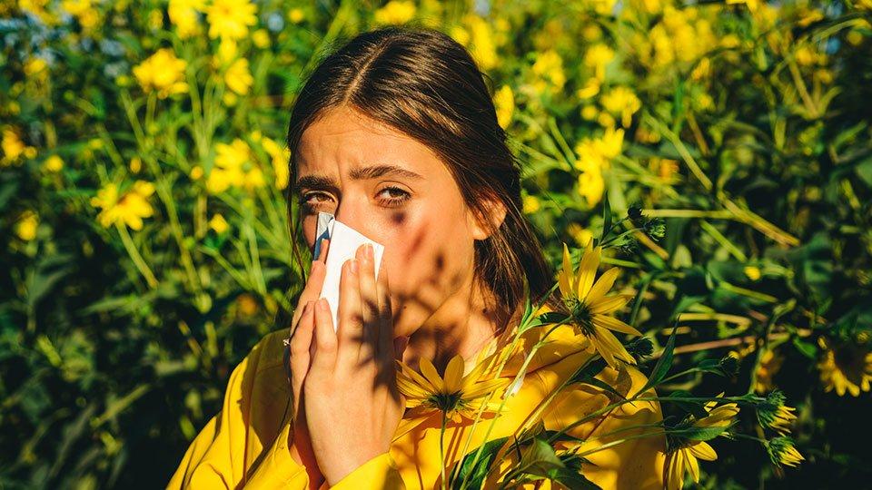"""Der Frühling naht, Bäume und Pflanzen beginnen zu blühen - für viele fängt damit auch die Zeit des """"Heuschnupfens"""" an."""