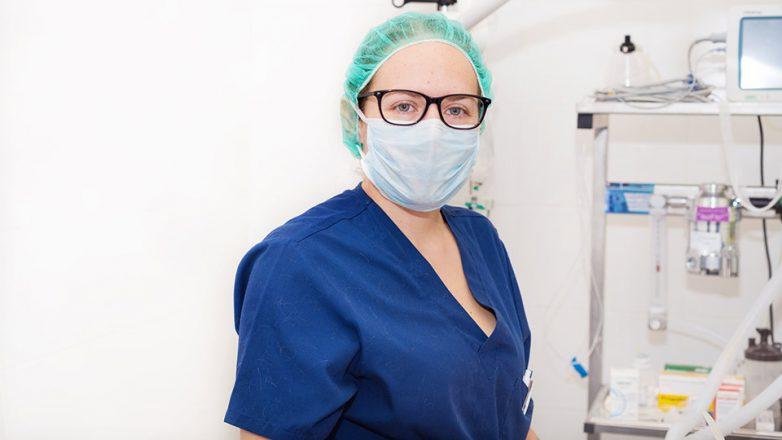 Zahlreiche Medizinstudierende leisten Unterstützung in der Corona-Krise.