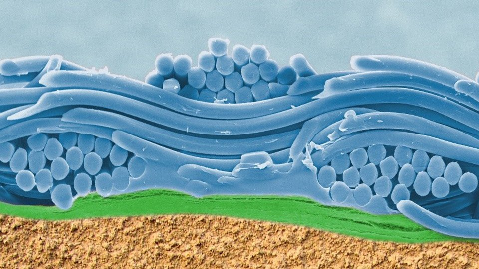 Membransysteme im waschbaren textilen Mehrlagenverbund.